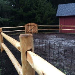 Paddle end white cedar with welded wire and arched gate