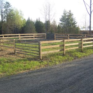 pressure treated stockyard with steel gates