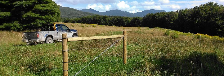 Gallup Brook Fencing